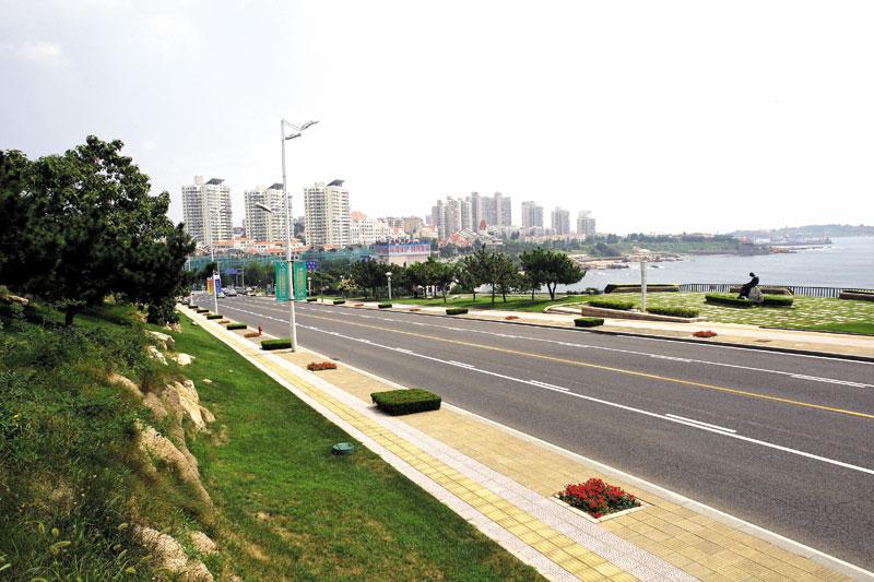 青岛市东海路绿化美化环境工程